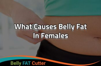What Causes Big Stomach in Females